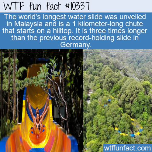 WTF Fun Fact - Longest Water Slide