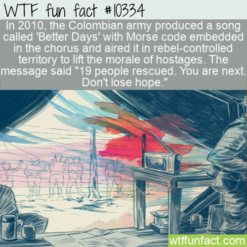 WTF Fun Fact - Message Code Song