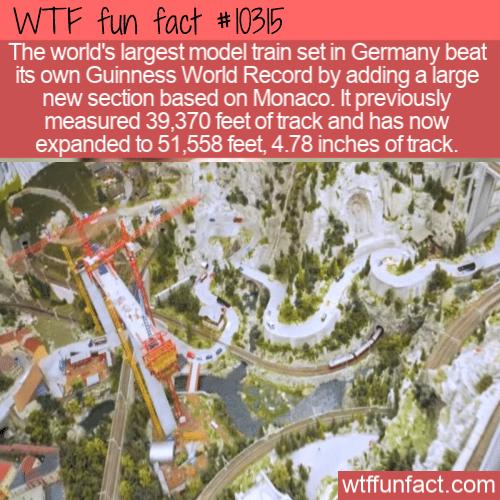 WTF Fun Fact - Model Train Made Record