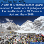 WTF Fun Fact - Mt Everest Cleanup