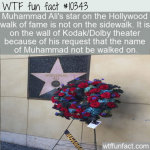WTF Fun Fact - Muhammad Ali Star