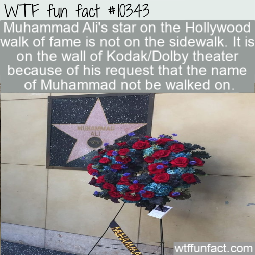 WTF Fun Fact - Muhammad Ali Star