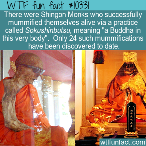 WTF Fun Fact - Mummy Before Death
