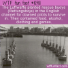 WTF Fun Fact – Rettungsboje Rescue Buoy