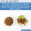 WTF Fun Fact – Sky Prawns