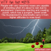 WTF Fun Fact – Smell Incoming Rain