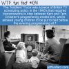 WTF Fun Fact – Toddlers' Truce
