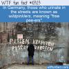 WTF Fun Fact – Wildpinkler