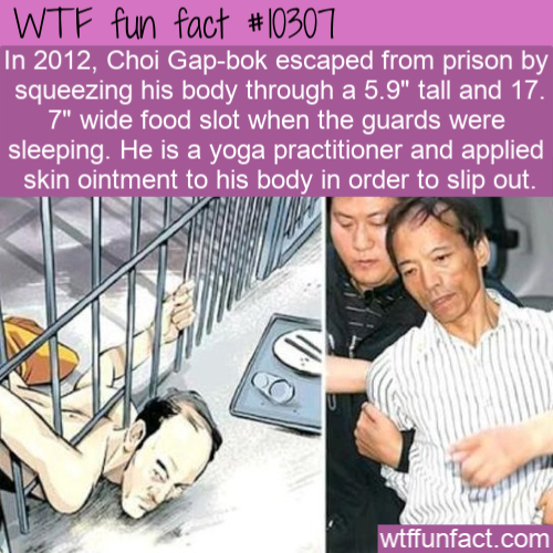 WTF Fun Fact - Yoga Prison Escaped