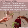 WTF Fun Fact – Apple Peel Leather