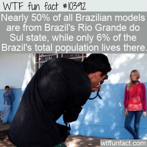 WTF Fun Fact - Source Of Brazils Model