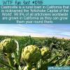 WTF Fun Fact – Artichoke Capital