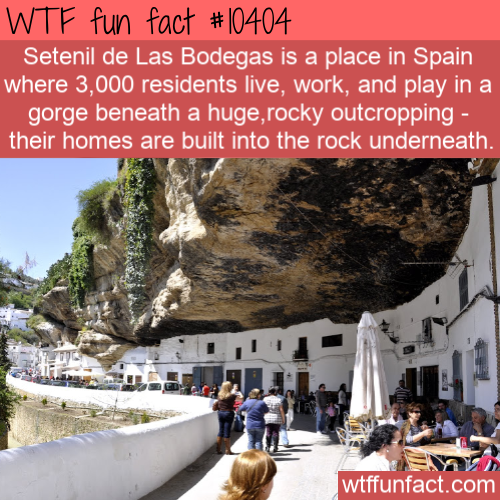 WTF Fun Fact - Living Under A Rock