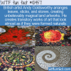 WTF Fun Fact – Amazing Land Artworks