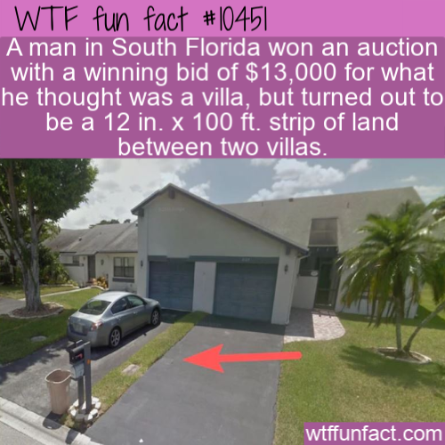 WTF Fun Fact - Man Buys 30cm strip of land