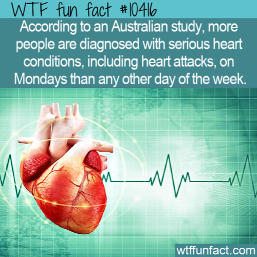 WTF Fun Fact - Monday Attack