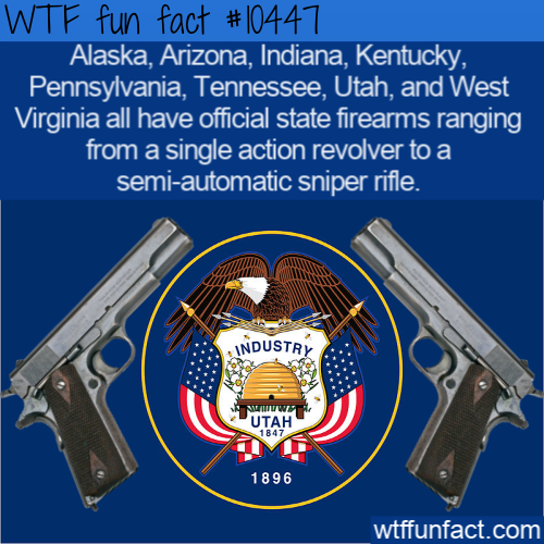 WTF Fun Fact - Official State Firearms