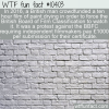 WTF Fun Fact – Paint Drying The Movie