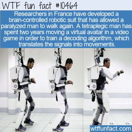 WTF Fun Fact - Paralyzed Can Control Own Limbs