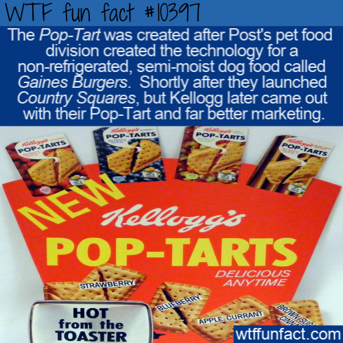 WTF Fun Fact - Pop-Tart Dog Food
