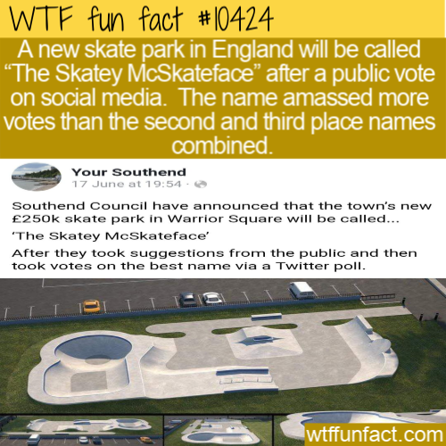WTF Fun Fact - Skatey McSkateface