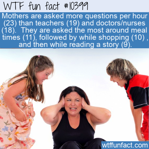 WTF Fun Fact - What_ Where_ When_ How_