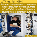 WTF Fun Fact - Astronauts Sleep With Fans