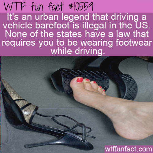 WTF Fun Fact - Barefoot Driving
