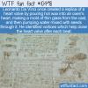 WTF Fun Fact – Da Vinci's Oxen Heart Valve
