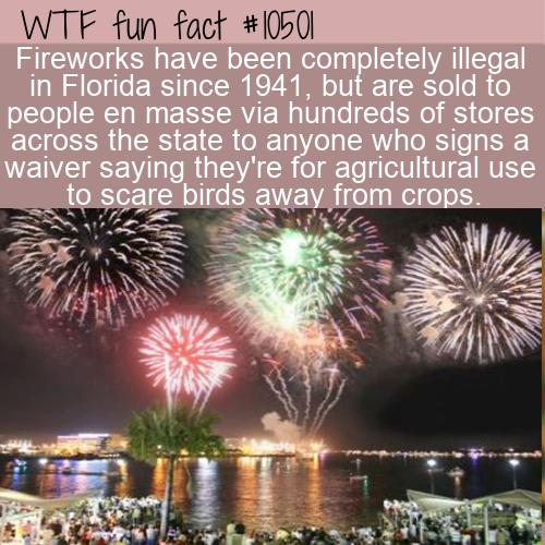 WTF Fun Fact - Florida Fireworks illegal