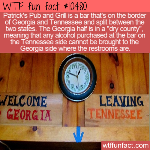 WTF Fun Fact - Half Dry Half Wet Bar