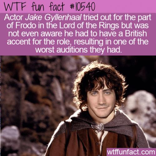WTF Fun Fact - Jake Gyllenhaal Frodo
