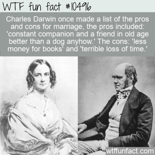 WTF Fun Fact - List Of Marriage Pros and Cons