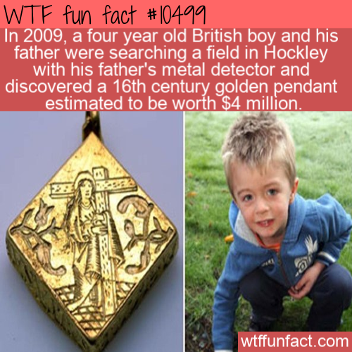 WTF Fun Fact - Little Treasure Hunter