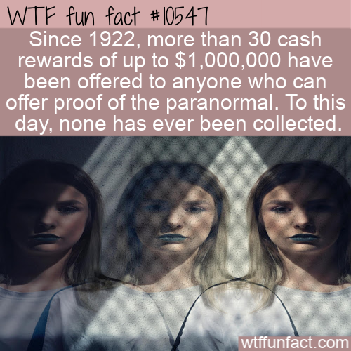 WTF Fun Fact - Paranormal Reward
