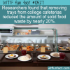 WTF Fun Fact – Reducing Food Waste