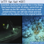 WTF Fun Fact - Ships Found In Black Sea