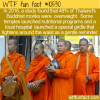 WTF Fun Fact – Thai Monks On A Diet