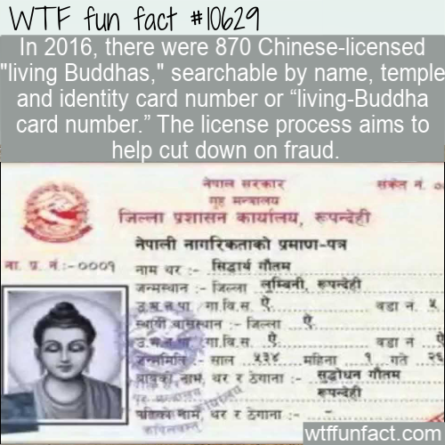 WTF Fun Fact - Chinese Licensed Living Buddhas