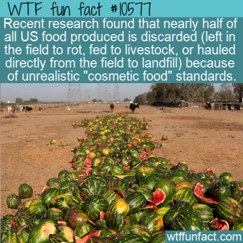 WTF Fun Fact - Cosmestic Food Waste