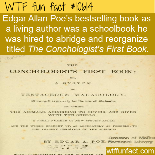 WTF Fun Fact - Conchologist's First Book