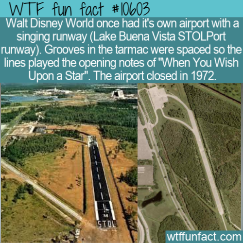 WTF Fun Fact - Disney World Airport