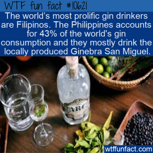 WTF Fun Fact - Gin Popular Withi Filipinos