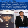 WTF Fun Fact – Shaggy The Marine