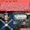 WTF Fun Fact – Skylab Reward