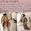 WTF Fun Fact – Whipping Tom