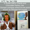 WTF Fun Fact – Whipple-Scrumpets