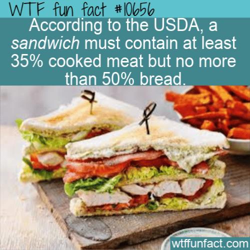 WTF Fun Fact - A Legal Us Sandwich