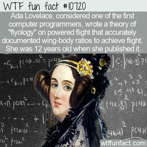 WTF Fun Fact - Ava Lovelace