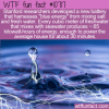 WTF Fun Fact – Blue Energy